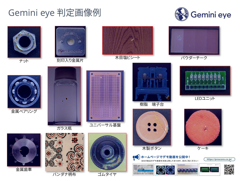 Gemini eye 判定画像例